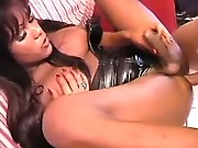 Cute ebony tranny fucked