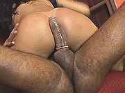 Playful tgirl got stuffed near palm